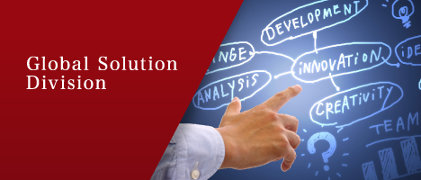 Global Solution Division